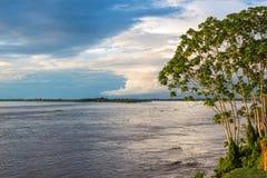 Взгляд Амазонкы Стоковые Фото