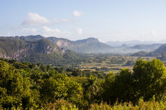 Взгляд ландшафта леса горы Стоковая Фотография RF
