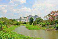 Взгляд ландшафта леса реки горы естественного Стоковое Изображение