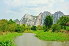 Взгляд ландшафта леса реки горы естественного Стоковые Изображения RF