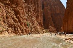 Взгляд ландшафта каньона ущелья Todgha на реке в высоких горах атласа, Марокко Dadès стоковые фотографии rf