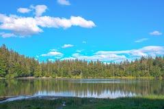 Взгляд ландшафта панорамы над озером и лесом Германией сосны и облаков черным Стоковое фото RF