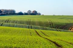 Взгляд ландшафта сельской местности в Великобритании Стоковые Изображения