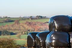 Взгляд ландшафта сельской местности в Великобритании Стоковая Фотография RF