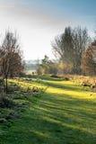 Взгляд ландшафта сельской местности в Великобритании Стоковые Фото