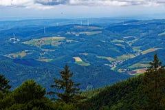 Взгляд ландшафта черного леса панорамный стоковое изображение
