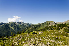 Взгляд Альпов во время лета Стоковое Изображение