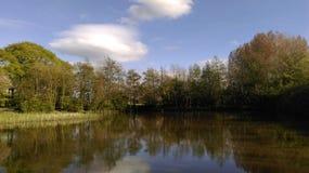Взгляд берега озера Стоковые Изображения