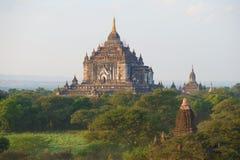 Взгляд верхней части старого буддийского виска Thatbyinnyu Phaya на начале вечера Старое Bagan, Мьянма Стоковые Изображения RF