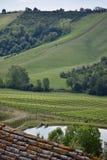 взгляд винодельни Стоковое Изображение RF