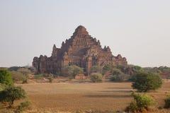 Взгляд виска Dhammayangyi в Bagan, Мьянме Стоковые Фотографии RF