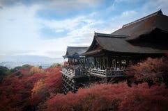 Взгляд виска Kiyomizu Dera с colerful деревьями и голубым небом Стоковые Изображения RF