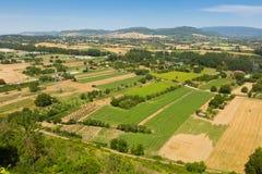Взгляд вниз с холма на полях Стоковая Фотография