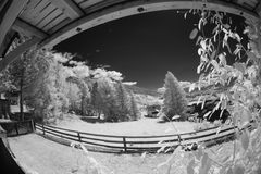 Взгляд двора в инфракрасном свете Стоковые Изображения