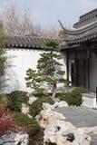 Востоковедный сад Стоковое Изображение