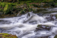 Взгляд восточного реки Lyn Стоковое фото RF
