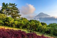 Взгляд вулкана Agua, Антигуа, Гватемала Стоковые Изображения