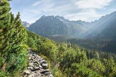 Взгляд высоких гор Tatra от hiking тропки Стоковые Фотографии RF