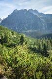 Взгляд высоких гор Tatra от hiking тропки. Стоковые Фото