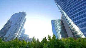 Взгляд высоких стеклянных современных зданий через куст выходит акции видеоматериалы