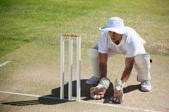 Взгляд высокого угла wicketkeeper заискивая за пнями стоковые фото