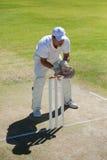 Взгляд высокого угла wicketkeeper стоя за пнями на поле стоковое фото rf