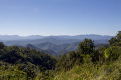 Взгляд в лес Samoeng Стоковая Фотография RF