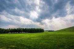 Взгляд в парке moerenume стоковые фото
