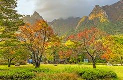 Взгляд в свете утра, национальный парк падения Seorak Seoraksan Стоковые Фотографии RF