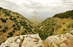 Взгляд Галилея природы весны Стоковое Фото
