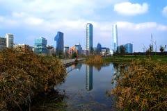 Взгляд города Сантьяго в chile Стоковое фото RF
