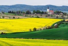 взгляд городка республики cesky чехословакского krumlov средневековый старый Южная Моравия Поле рапса около деревни Kostelec Стоковое Фото