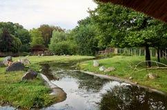 взгляд городка республики cesky чехословакского krumlov средневековый старый Зоопарк Праги природы 12-ое июня 2016 Стоковое фото RF