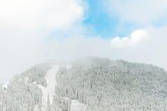Взгляд горы в утре, Вашингтона снега Стоковые Изображения RF