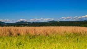 Взгляд горы и долины в Saratoga County NY Стоковая Фотография RF