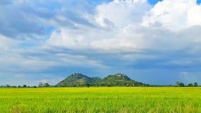 Взгляд горы и риса Стоковые Фотографии RF