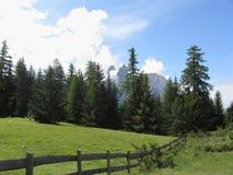 взгляд горы панорамный Стоковое Фото
