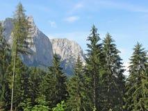 взгляд горы панорамный Стоковая Фотография