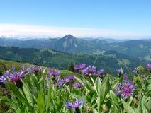 Взгляд гор в швейцарских Альпах Стоковые Изображения