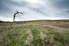 Взгляд гор мела в долине Дона, парк Donskoy Стоковое Фото