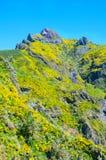 Взгляд гор на трассе Encumeada - Boca De Corrida, острове Мадейры, Португалии, Европе Стоковое Фото