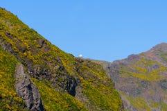 Взгляд гор на трассе Encumeada - Boca De Corrida, острове Мадейры, Португалии, Европе Стоковые Фотографии RF