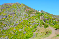 Взгляд гор на трассе Pico Ruivo - Encumeada, острове Мадейры, Португалии, Европе Стоковая Фотография