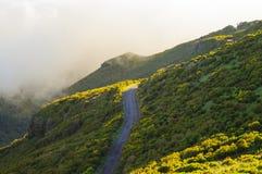 Взгляд гор на трассе Pico Ruivo - Encumeada, острове Мадейры, Португалии, Европе Стоковые Изображения RF