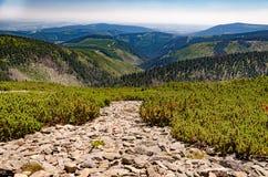 Взгляд гребней горы осыпи fields Стоковая Фотография
