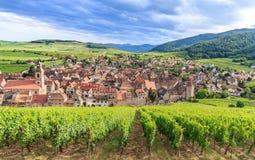 Взгляд деревни Riquewihr в Эльзасе Стоковые Фотографии RF