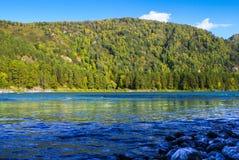Взгляд лесистой горы и пропуская голубого реки Стоковые Фотографии RF