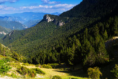Взгляд лета гор Стоковые Изображения RF