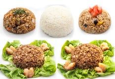 Взгляд детали риса установленный Стоковое фото RF