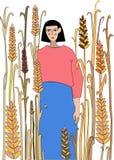 взгляд лета травы поля угла широко Стоковые Фотографии RF